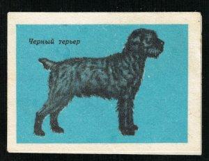 Black terrier, Matchbox Label Stamp (ST-62)