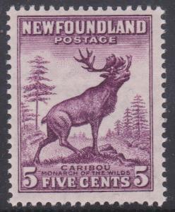Newfoundland - #191a mint 5c Caribou Die I Perf. 13 1/2 NH