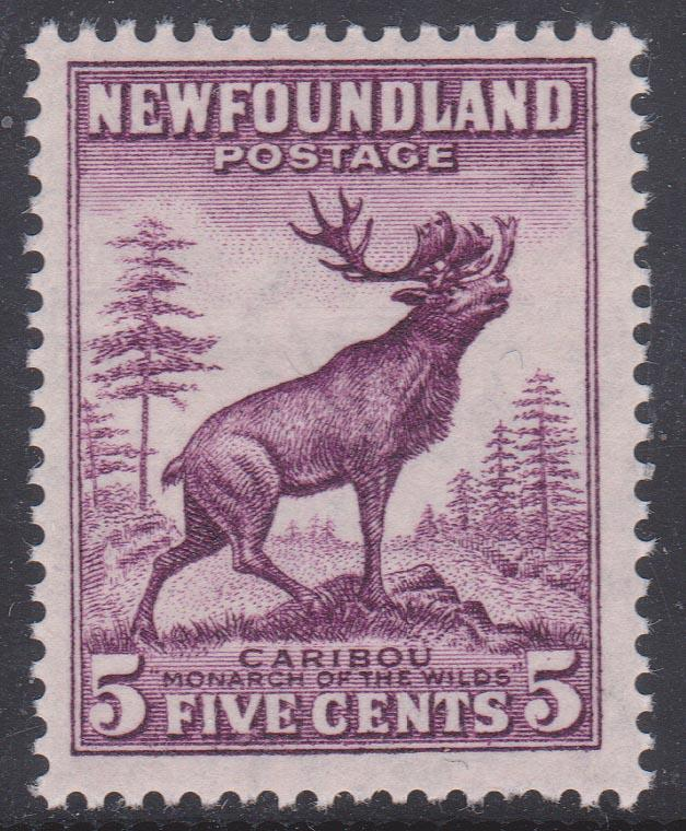 Newfoundland - #191a mint 5c Caribou Die I Perf. 13 1/2 NH