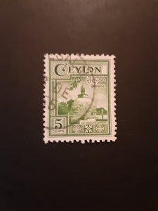 +Ceylon #308u