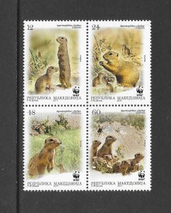 MACEDONIA #581 SQUIRREL  WWF  MNH