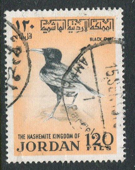 Jordan #588 Used