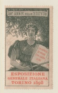Cinderella or revenue fiscal Stamps 6-19-21- Italy- mnh gum 1898 Torino