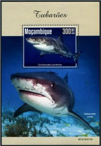 2019 Mozambique Sharks SS (Scott NA) MNH