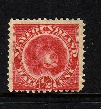 Newfoundland Sc 56 1887 1/2 c rose red dog stamp mint