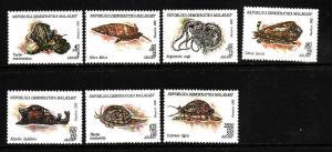 Malagasy-Sc#1122-8-unused NH Marine Life set-1993-Mollusks-