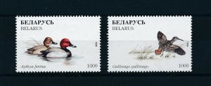 [103072] Belarus 1996 Birds vögel oiseaux From sheets MNH