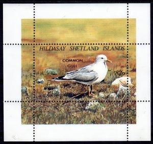 Shetland Islands (Hildasay) 1995  COMMON GULL BIRDS Souvenir Sheet (1) MNH