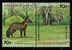 Animals (T-4961)