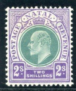 Natal 1904 KEVII 2s dull green & bright violet MLH. SG 156. Sc 107.