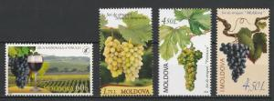 Moldova Grape Lot All 4 issues 2006, 2009, 2010, 2013 4 MNH stamps