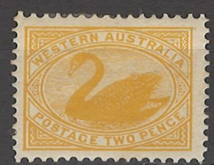COLLECTION LOT OF #1497 WESTERN AUSTRALIA # 77 MH 1902 2 SCAN
