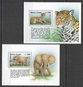 Z0215 SIERRA LEONE WILD ANIMALS FAUNA WILD CATS LEOPARD ELEPHANTS 2BL MNH