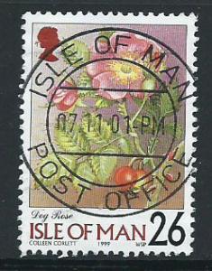 Isle of Man  SG 782 VFU imprint 1999