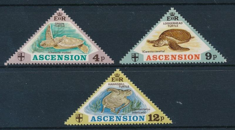[23909] Ascension 1973 Marine Life Turtles Triangles MLH