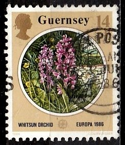 Guernsey 1986 SG. 367 used (10819)