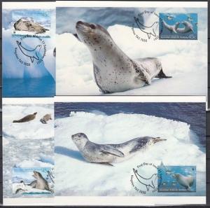 Australian Antarctic, Scott cat. L118 A-D. W.W.F. Seals issue on Maximum Cards.^