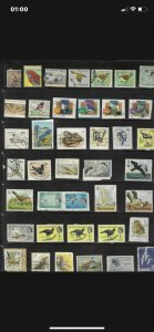 Bird Thematics stamps from around the world used on/off paper