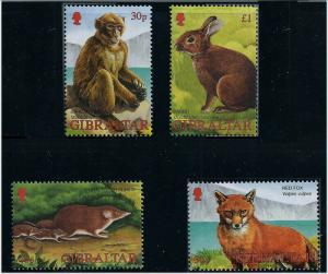 Gibraltar 2002 Wildlife of Gibraltar  4 Stamp Set #909-12