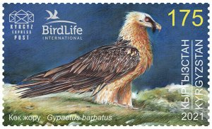 Stamps of Kyrgyzstan 2021- Bird of the Year . The Bearded Vulture.
