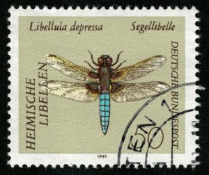 Dragonfly, Insect (T-5183)
