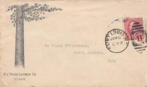 United States Missouri Saint Louis 1895 numeral duplex  Illustrated Advertisi...