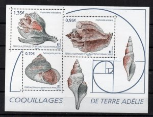 FRANCE - TAAF - FSAT - 2019 - M/S - SEASHELLS - SHELLS FROM TERRE ADELIE -
