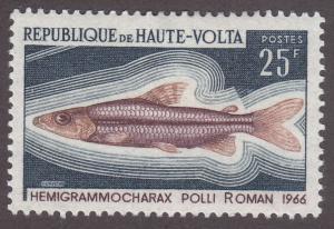 Burkina Faso 197 Hemigrammocharax Polli 1969