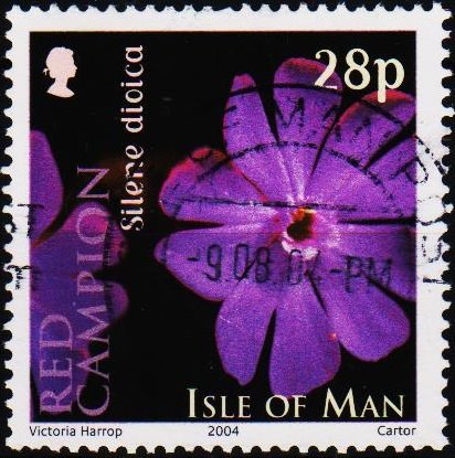 Isle of Man. 2004 28p S.G.1141 Fine Used