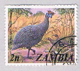 Zambia 136 Used Guinea Fowl 1975 (BP26624)