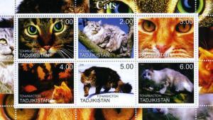 Tajikistan 2000 DOMESTIC CATS Sheet Perforated Mint (NH)