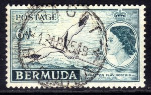 Bermuda 1953 - 62 QE2 6d Phaeton Flavirostris Bird used SG 143 ( J339 )