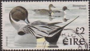 Ireland 1997 SG1061 £2 Northern Pintails FU