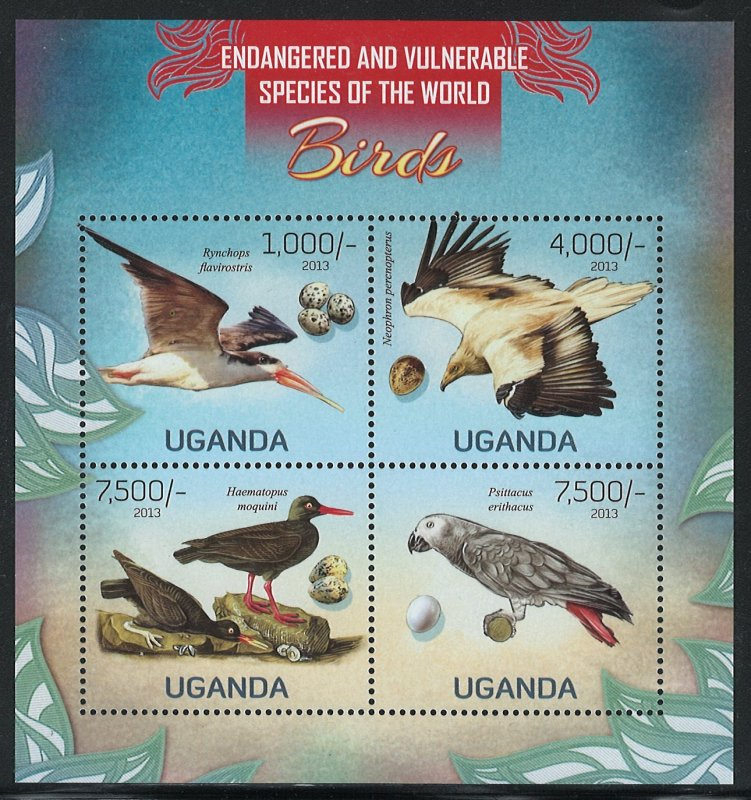 Uganda Scott 2023 MNH! Birds! Sheet of 4!