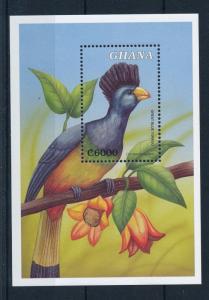 [29882] Ghana 2000 Birds Vögel Oiseaux Ucelli  MNH Sheet