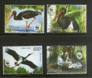 Belarus MNH 559-62 Black Stork Birds WWF 2005