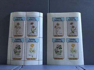 Holy Island Eynhallow Scotland Flowers plants Globe Flower  MNH stamps  R24124