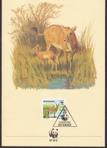Botswana, Fauna, Animals, WWF card  / 1988