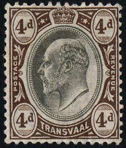 Transvaal 273 MH King Edward VII
