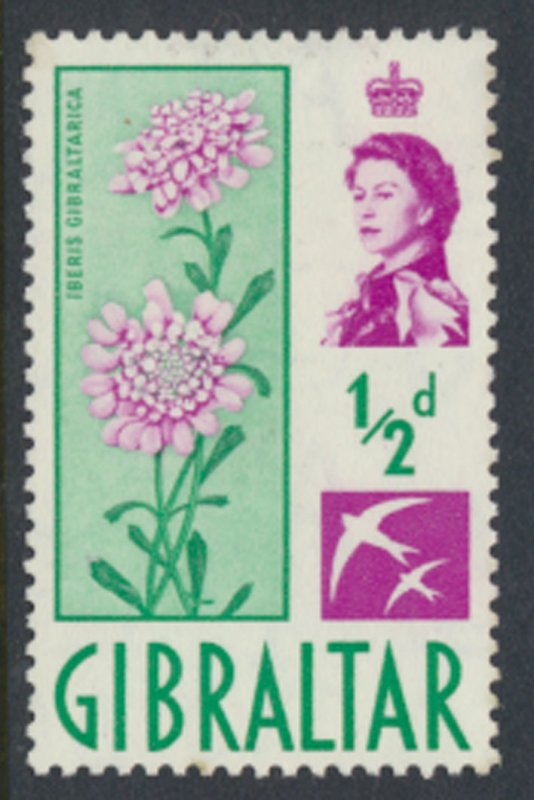 Uganda  SG 160  Used  1975  Ground Nuts SC# 144  See scan