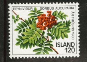 ICELAND Scott 530 MNH** 1980 Tree stamp CV$0.35