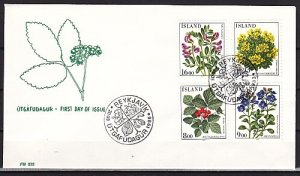 Iceland, Scott cat. 602-605. Flowers issue. First day cover. ^