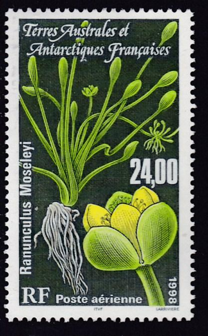 French Southern & Antarctic Territories 1998 High Value Air Mail Plants VF/NH