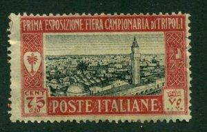 Libya 1927 #B9 MNG SCV(2020)=$3.50