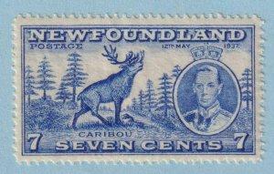 CANADA - NEWFOUNDLAND 235  MINT NEVER HINGED OG ** NO FAULTS VERY FINE!
