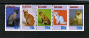 Naxcivan Republic 1997 Domestic Cats Strip (5) Perforated mnh.vf