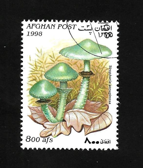 Afghanistan 1998 - U - Unlisted - Pic 3 *