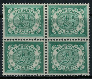 Surinam #47*  CV $20.00