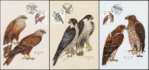 Czech Republic. 2003. Birds of Prey (Mint) Set of 3 Maxi Cards