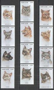 A0174 SIERRA LEONE FAUNA PETS DOMESTIC ANIMALS CATS !!! FULL BIG SET MNH